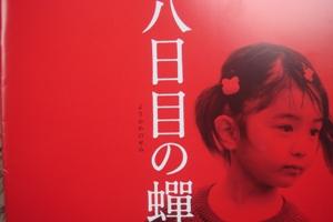 youkamenosenmi.JPG
