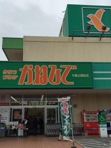 okinawa05316.jpg
