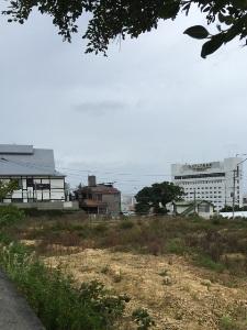 okinawa01316.jpg
