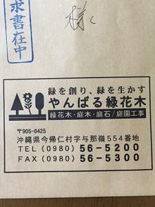 okinawa11276.jpg