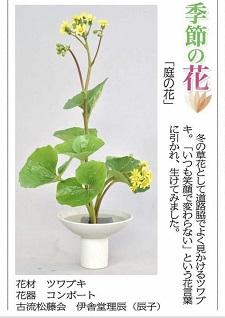okinawa012916.jpg