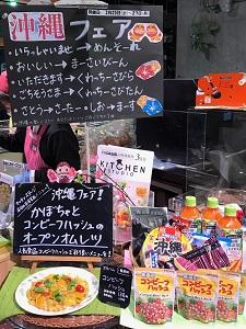 okinawa022616.jpg