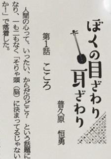 okinawa040151.jpg