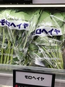 okinawa041512.jpg