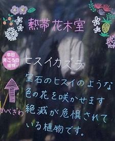 okinawa041517.jpg