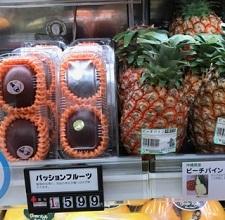 okinawa04157.jpg