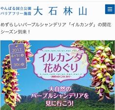 okinawa04224.jpg