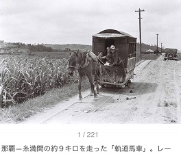 okinawa06174.jpg