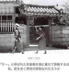 okinawa06178.jpg