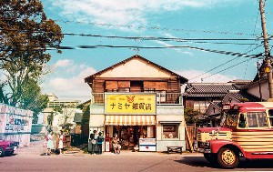 namiyazakka.jpg