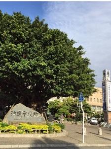 okinawa0331151.jpg