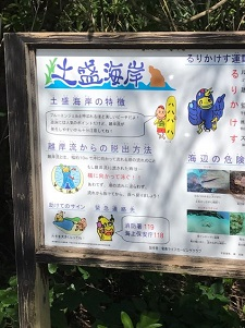 okinawa03315.jpg