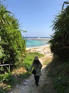 okinawa03316.jpg