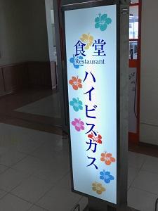 okinawa07284.jpg