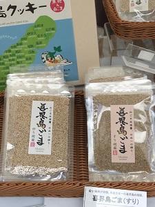 okinawa10138.jpg