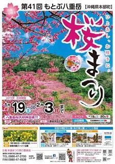 okinawa011224.JPG