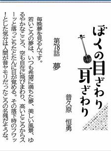 okinawa01192.jpg