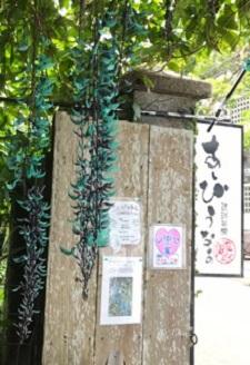 okinawa03305.jpg