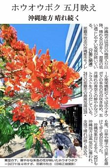 okinawa052527.jpg