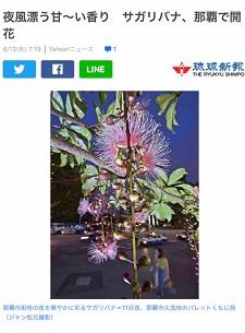 okinawa061515.jpg