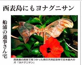 okinawa09078.jpg