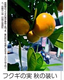okinawa091416.jpg