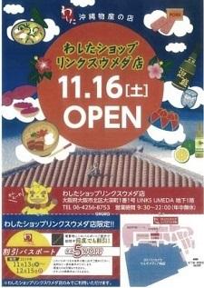 okinawa1109125.jpg