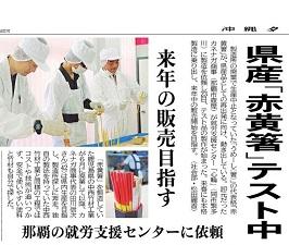 okinawa11299.jpg