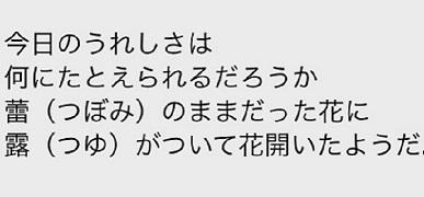 okinawa01119.jpg