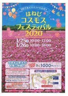 okinawa031423.jpg
