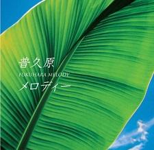 okinawa03286.jpg
