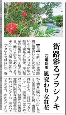 okinawa06067.jpg