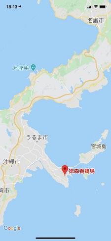 okinawa06279.jpg