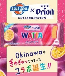 okinawa0705131.jpg