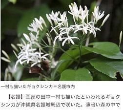 okinawa070518.jpg