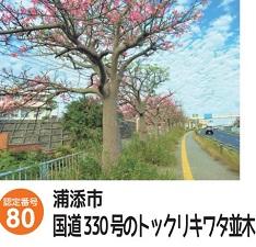 okinawa103110.jpg