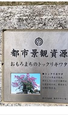okinawa103115.jpg
