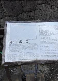 okinawa01166.jpg