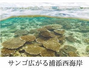 okinawa013014.jpg