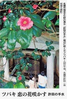 okinawa013020.jpg