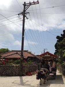 okinawa022012.jpg