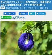okinawa03137.jpg