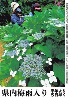 okinawa05088.jpg