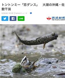 okinawa052923.jpg