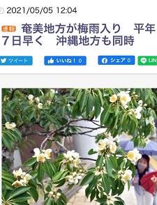 okinawa05293.jpg