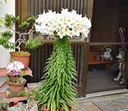 okinawa061218.jpg