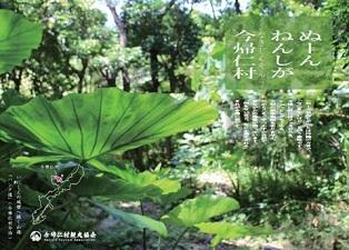 okinawa06125.jpg