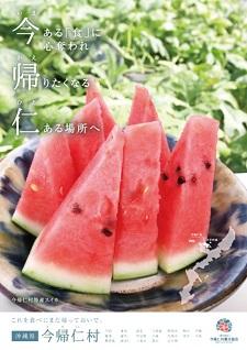 okinawa061271.jpg
