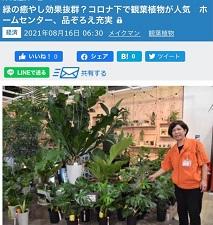 okinawa0821131.jpg