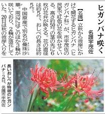 okinawa09119.jpg